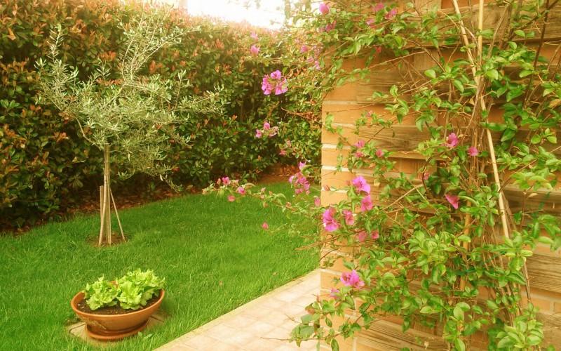 Angoli colorati il giardino esuberante agoranews - Angoli di giardino ...
